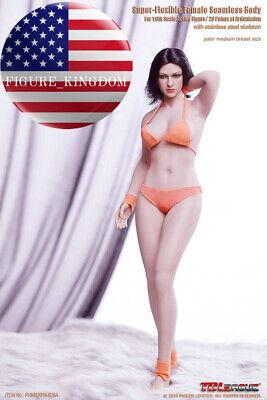 PHICEN TBLeague 1//6 Buxom Women S28A Seamless female plump Body PALE ❶USA❶