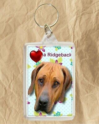 Rhodesian Ridgeback Dog Rectangular Chrome Plated Keyring Boxed Gift