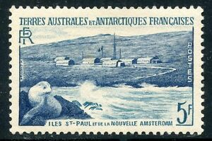 TIMBRE-T-A-A-F-TERRES-AUSTRALES-NEUF-N-4-OTARIE-COTE-4-20