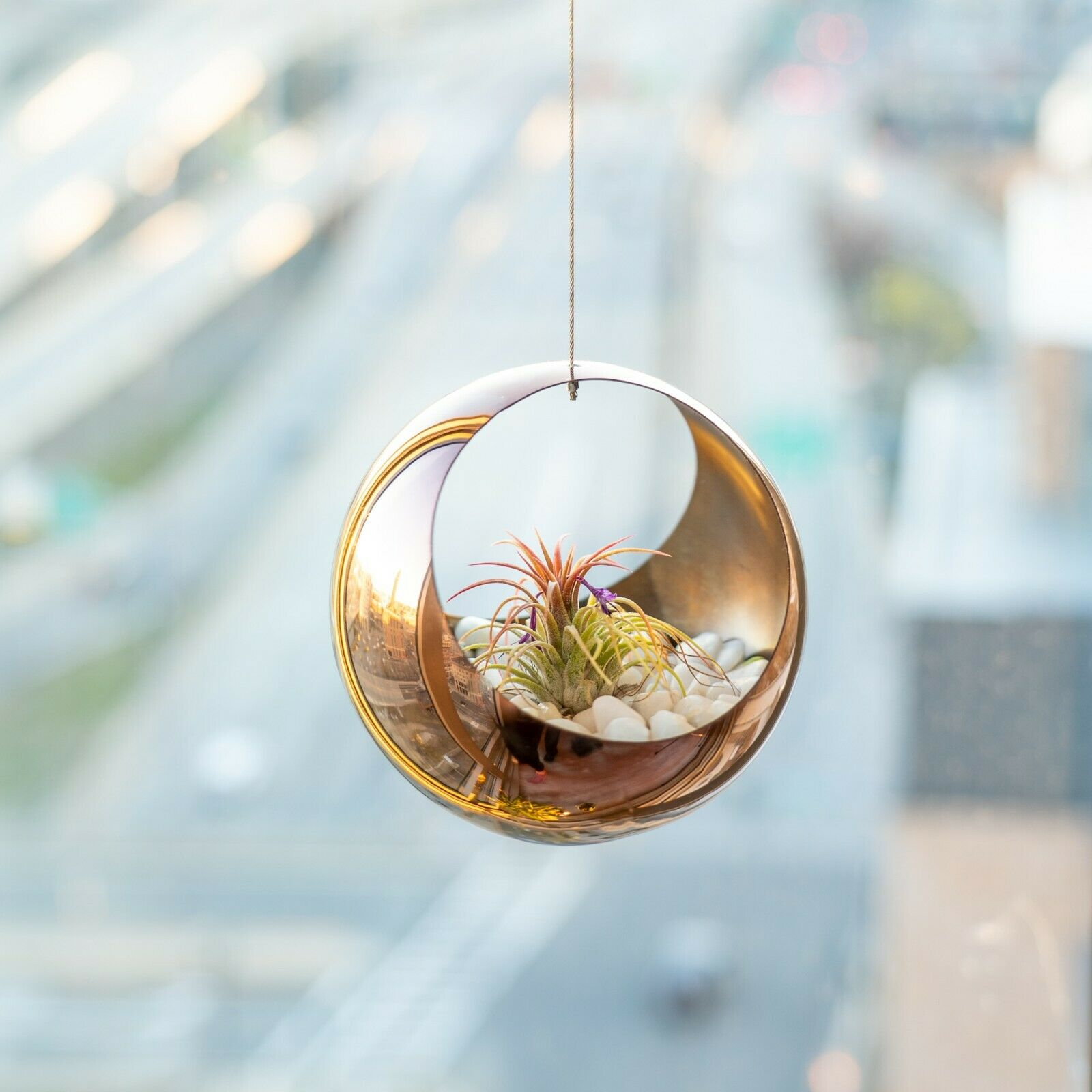 Rose Gold Metal Hanging Planter Stainless Steel Indoor Flower Pot Air Plant For Sale Online