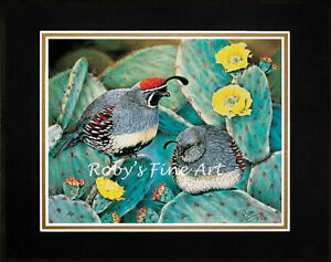 Matted-Gambel-039-s-Quail-Art-Print-034-Prickly-Pair-034-11-034-x-14-034-Mat-by-Artist-Roby-Baer