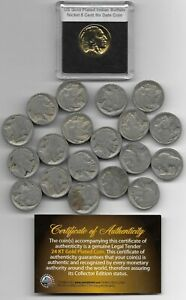 Rare-Old-Antique-US-Buffalo-Indian-Head-Nickel-Big-Coin-Collection-Gold-LOT-310
