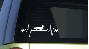 Longhaired Dachshund Lifeline Sitcker *I852* 8.5 inch wide heartbeat decal  …
