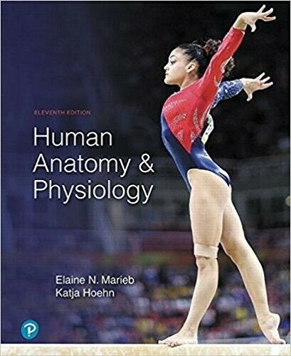 human anatomy and physiology 11th edition By Elain 2