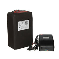 48V 20AH Lithium LiFePO4 Battery Pack Power for 1000W E-bike with Free Charger