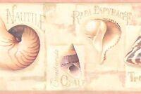 Wallpaper Border Designer Sea Shells Pink, Tan, Peach On Cream