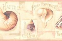 Wallpaper Border Designer Sea Shells Pink, Tan, Peach On Cream