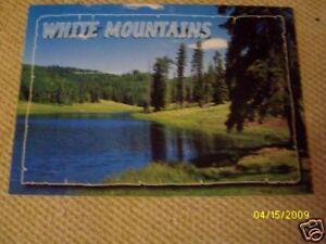 WHITE-MOUNTAINS-ARIZONA-NEW-POSTCARD