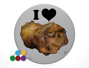 I-Love-Guinea-Pigs-pin-badge-7-7cm-diameter