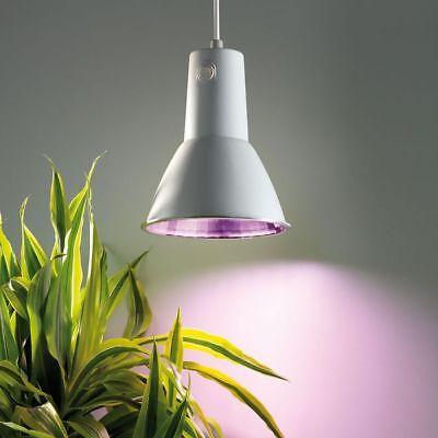 Bio Green Energiespar Pflanzenlampe L15 14 W steckerfertig