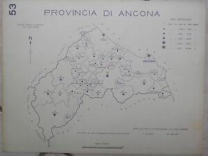 Stampa su forex provincia di rimini o ancona