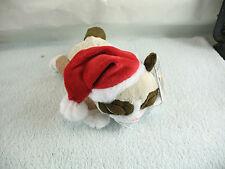 Grumpy Cat in Santa Hat with tag