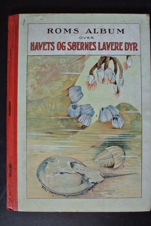 roms album over havets og søernes lavere dyr, emne: dyr