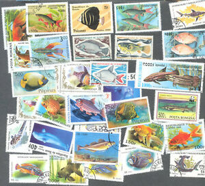 Fish  100 all different stamps collection - <span itemprop=availableAtOrFrom>montgomery, Shropshire, United Kingdom</span> - Returns accepted Most purchases from business sellers are protected by the Consumer Contract Regulations 2013 which give you the right to cancel the purchase within 14 days - montgomery, Shropshire, United Kingdom