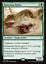 mtg-GREEN-BLACK-DESERTS-DECK-Magic-the-Gathering-rare-60-card-AMON-ramunap-hydra thumbnail 5