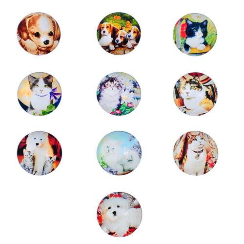Großverkauf Glas Cabochons Perlen zum Kleben Hund Kätzchen Muster 20mm Dia.
