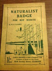 Naturalist-Badge-For-Boy-Scouts-by-W-H-Gurney-Vintage-Scout-Paperback-1923