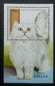 Guinea Cats 1995 Children Pet Fauna Animal (miniature sheet) MNH