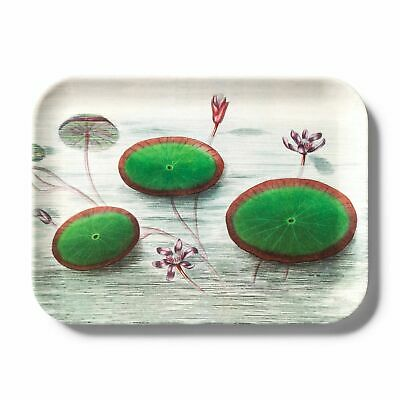 John Derian Green Geranium Rectangular Melamine Serving Tray Handles Target XXO