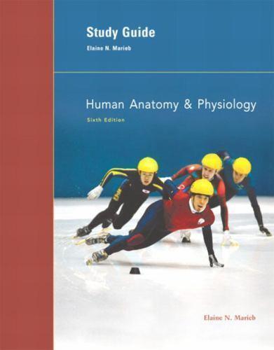Human Anatomy & Physiology : Study Guide by Elaine N. Marieb (2004 ...