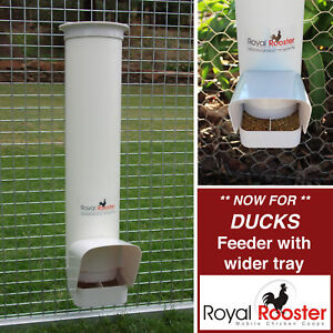 Charming Image Is Loading ROYAL ROOSTER Single Duck Feeder For Wider Beaks