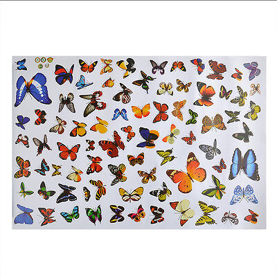 80PCS Butterfly Home DIY Removable Colorful Wall Stickers Art Vinyl Decal Decor