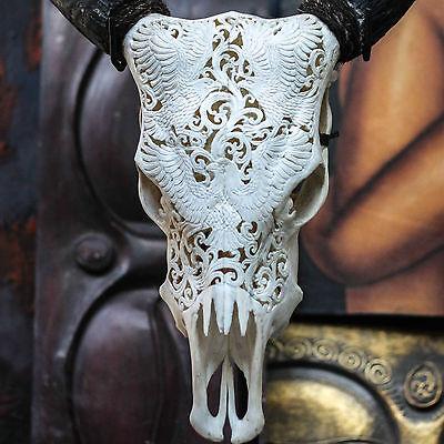 Hand Carved Eagles Steer/ Cow Skull + Horns/ Bull/ Longhorns/ Buffalo Taxidermy