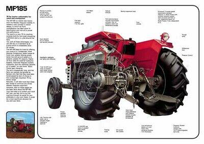 Vintage Massey Ferguson Tractor 35 65 CUTAWAY SALES BROCHURE//POSTER ADVERT A3