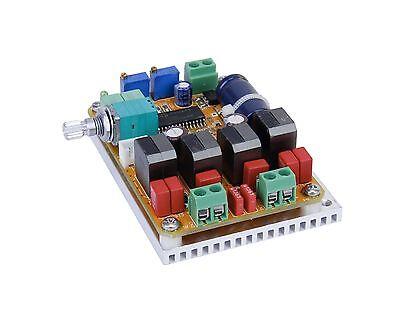 Hifimediy T1-M TK2050 2 x 50W Tripath amplifier TC2000 TP2050 9 - 24V DC T-AMP