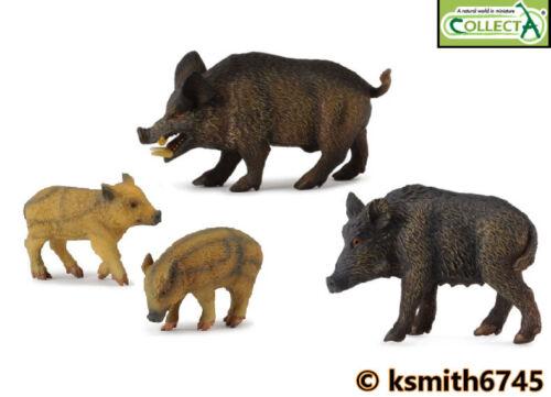 nouveau CollectA sanglier famille Bundle solide Jouet en plastique Wild Zoo Animal
