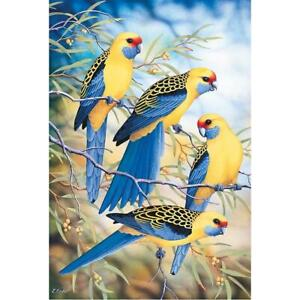 5D-DIY-Full-Drill-Diamond-Painting-Birds-Singer-Cross-Stitch-Embroidery-Kit