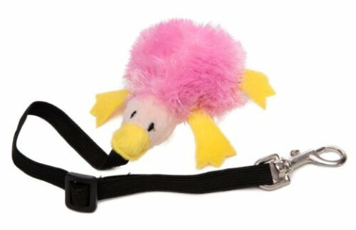 Free Shipping in USA Marshall Bungee Toy for Ferrets Colors Vary