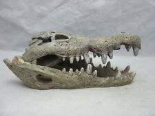 2001 BRPP Aquarium decoration crocodile skull. Fish tank Ornament