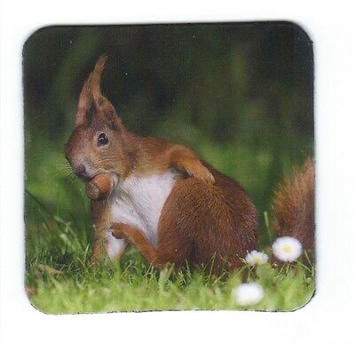 little fox kleiner Fuchs versteckt sich im Gras Kühlschrank Magnet