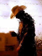 COWBOY WATERFALL HAT TEXAN WILDWEST PHOTO ART PRINT POSTER PICTURE BMP212A