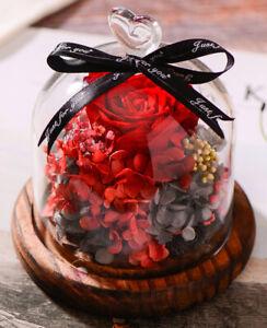 Je T Aime Preserved Fresh Red Roses Immortal Flower Glasses Gift Box