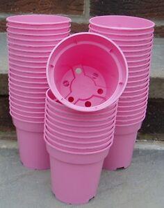 Pk50 9cm 312 heavy duty pink plastic plant flower pots 9f ebay image is loading pk 50 9cm 3 1 2 034 heavy mightylinksfo