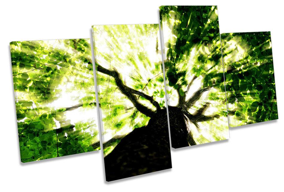 FORESTA FORESTA FORESTA CIELO FLOREALE MULTI TELA parete arte in scatola incorniciato b80f15
