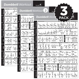Details about NewMe Fitness Dumbbell Exercise Posters Laminated 3 Pack  Includes VOL 1,2,3 W