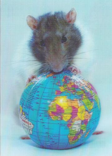 niedliche weiß-braue Ratte und Erdkugel white rat and globe 3 D Ansichtskarte