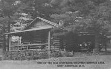 Asheville North Carolina Malvern Springs Park Log Cabin Antique Postcard K11219