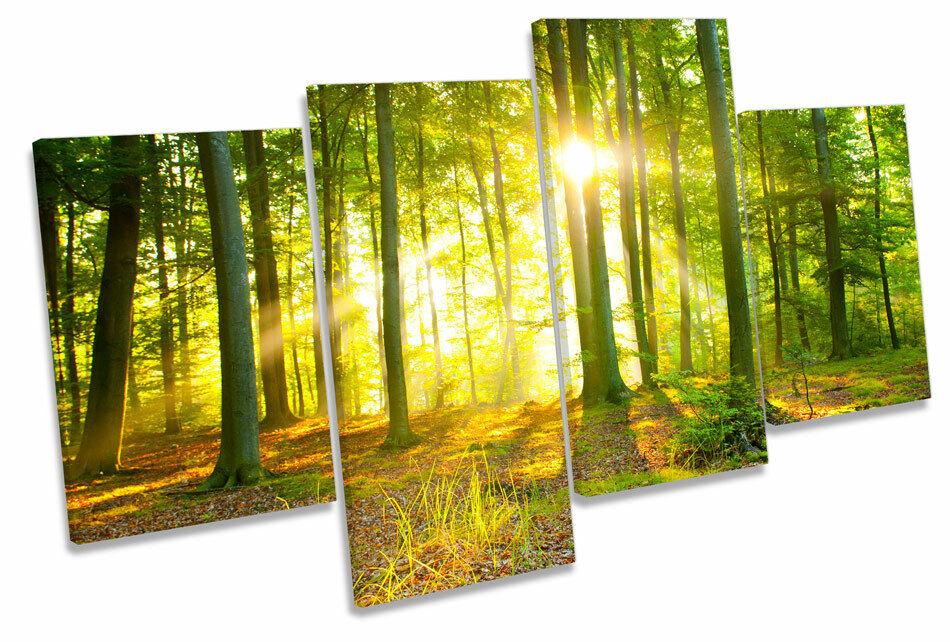 Sunlight Forest Trees Sunset MULTI CANVAS WALL ART Framed Panel