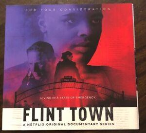 Details about 2018 NETFLIX EMMY DOCUMENTARY DVD FLINT TOWN MINI SERIES 3  EPS Michigan Water et