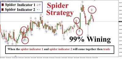 R196 Spider Strategy Binary Options Mt4 Windows Indicator Ebay