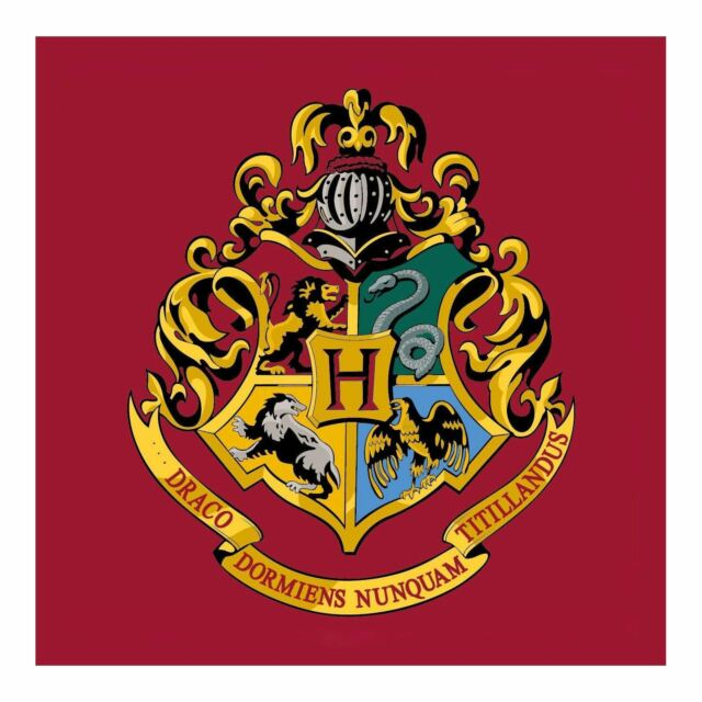 Harry Potter Hogwarts Emblème Carré Tapis Large