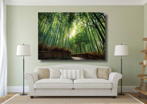 Beautiful Landscape Bamboo Trees Large Poster Wall Art Print A0 A1 A2 A3 A4