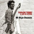 Mi Bajo Danz¢n by Yunior Terry & Son De Altura/Yunior Terry (CD, Dec-2012, CD Baby (distributor))