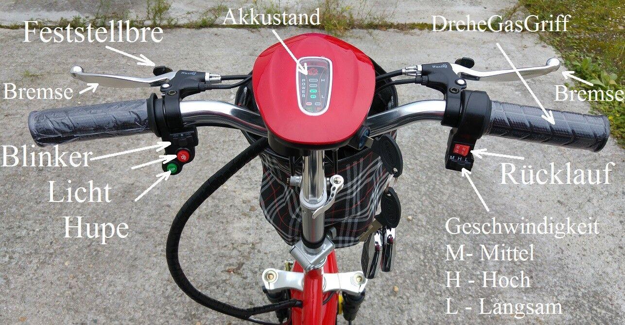 500W  20Ah LITHIUM-ion KLAPPRAD DreiRad Zappy Zappy Zappy ElektroRoller ElektroScooter 2019 01988d