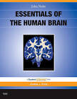 Essentials of the Human Brain: With STUDENT CONSULT Online Access by John Nolte (Paperback, 2009)