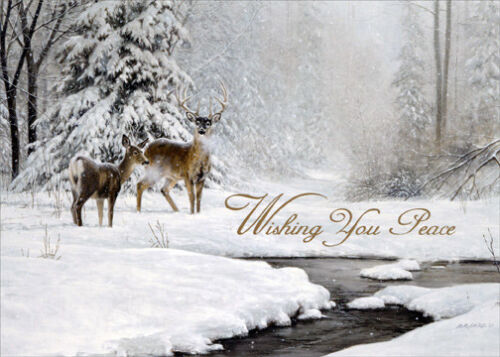 Dear and Stream in Winter - Box of 18 LPG Nature Christmas Cards